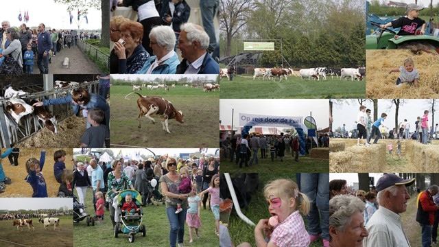Weidegangfeest 2011 (collage).jpg
