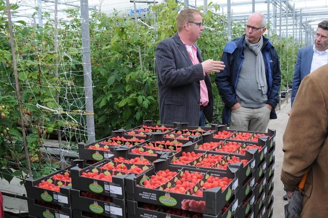 Bedrijfsbezoek van gemeenteraad aan kleinfruitbedrijf,  juni 2015