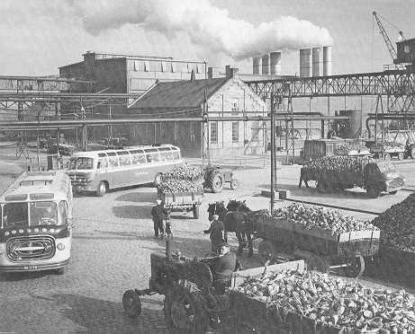 Suikerfabriek Dinteloord.jpg