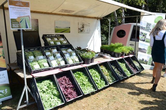 zummers-foodfestival-zlto-someren-in-pastorietuin-someren-eind-(125346810).jpg