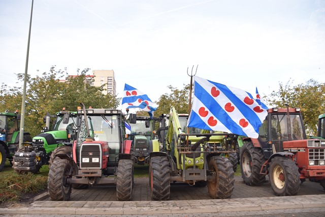 Friese vlag.JPG